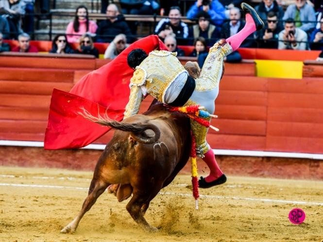 Borja Collado toca el timbre de Madrid
