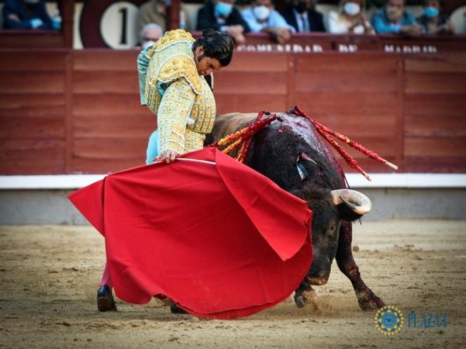 Ginés tumba al natural el suceso quebrado de Morante
