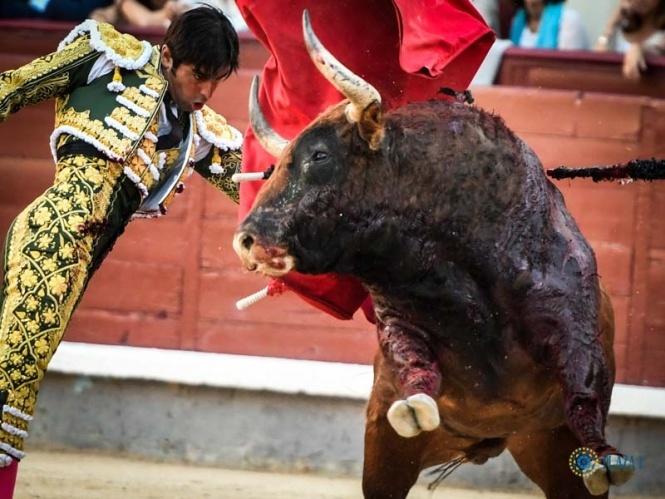 Perera, torero de una plaza en decadencia