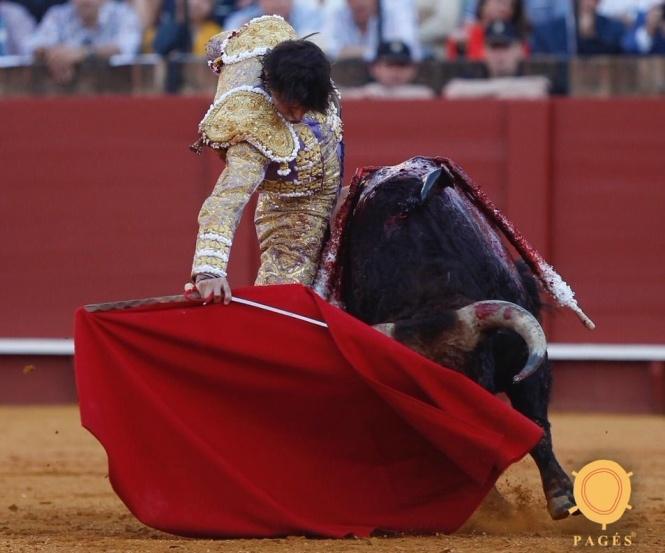 Pablo Aguado es el toreo