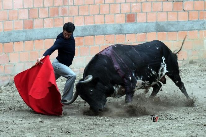 Emilio de Justo se prepara en el campo bravo colombiano