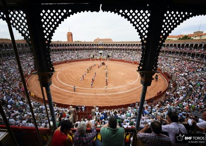 Nace el movimiento 'Salamanca es Tauromaquia'