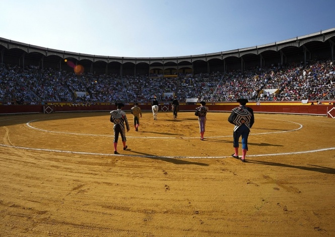 Palencia presenta su Feria de San Antolín