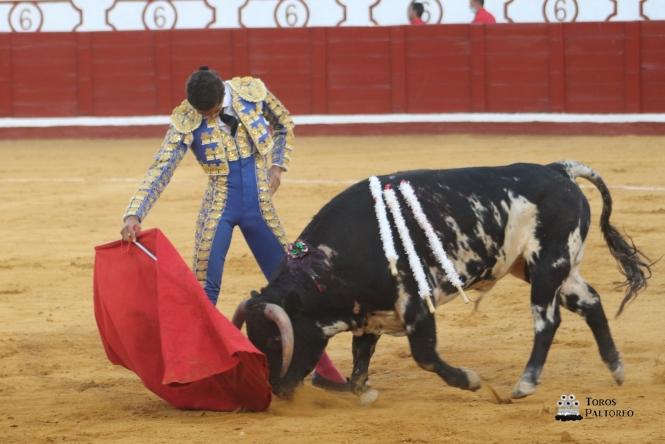 Nacho Torrejón gana 'Promesas de Nuestra Tierra'