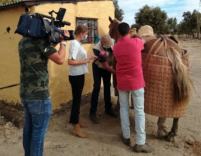 Tomás Rufo muestra el día a día de un torero en CMM